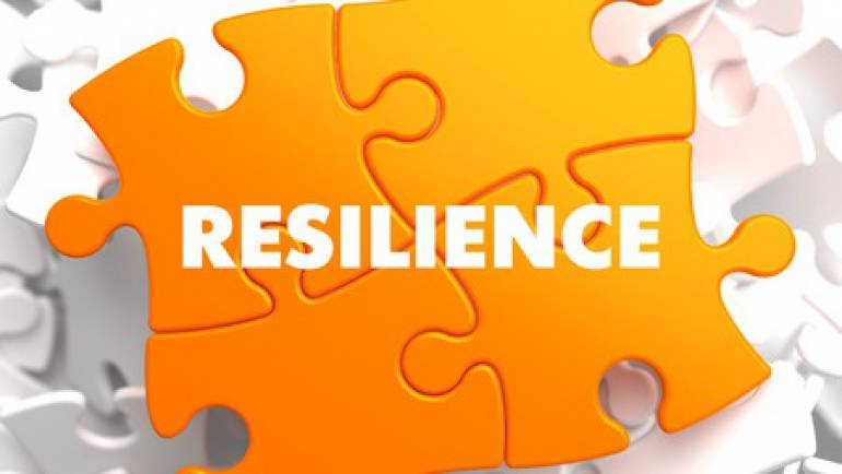 Network Resilience